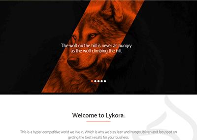 Lykora Consultancy